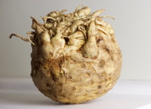 Celery Root in all its glory. Photo By Louise Crosby